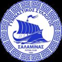 """ΓΣ Σαλαμίνας - Futsal Hellas """"το πρώτο ελληνικό site ποδοσφαίρου σάλας"""""""